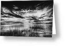 Dream Of Better Days-bw Greeting Card