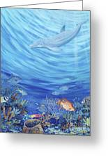 Dream Reef Greeting Card