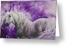 Dream Stallion Greeting Card