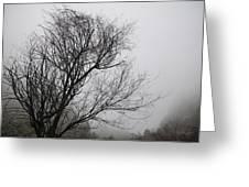 Dreamer Tree Greeting Card