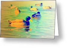 Ducks Dreaming Of Dreaming Ducks  Greeting Card