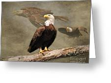Dreaming Of Freedom Greeting Card