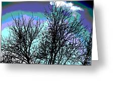 Dreaming Of Spring Through Icy Trees Greeting Card