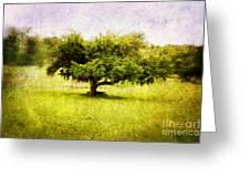 Dreamland Greeting Card