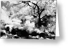 Dreamy Gardens - 1007 Greeting Card