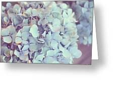 Dreamy Image Of Hydrangea Flower Greeting Card