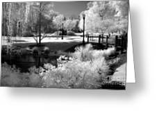 Surreal Infrared Black White Infrared Nature Landscape - Infrared Photography Greeting Card