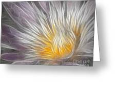 Dreamy Waterlily Greeting Card