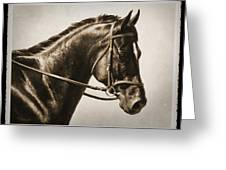 Dressage Horse Old Photo Fx Greeting Card by Crista Forest