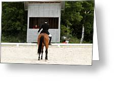Dressage Salute Greeting Card