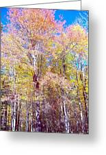 Dressed For Fall Greeting Card