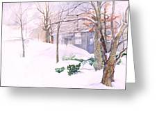 Dressed In Winter White Greeting Card