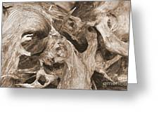 Driftwood 1 Greeting Card