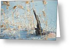 Driftwood Abstract Greeting Card