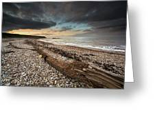 Driftwood Laying On The Gravel Beach Greeting Card