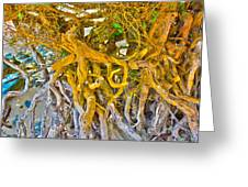 Queen Mariana's Driftwood Greeting Card