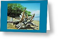 Driftwood On A Maui Beach Greeting Card
