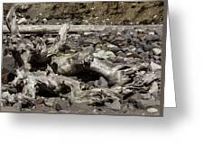 Driftwood Mt. Rainier  Greeting Card