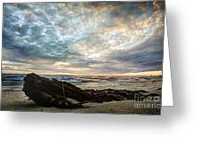 Driftwood Sunset Greeting Card
