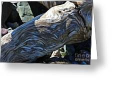 Driftwood Texture And Shadows Greeting Card