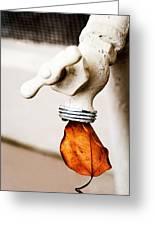 Drip Leaf Greeting Card by Bobbi Feasel