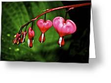 Drip Of The Heart Greeting Card