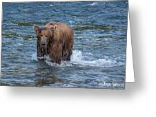 Dripping Grizzly Greeting Card