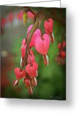 Dripping With Love Greeting Card by Mary Machare
