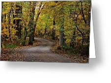 Drive Through The Woods Greeting Card
