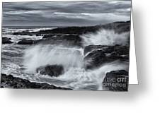 Driven By The Storm Greeting Card