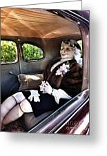 Driving Miss Daizee Greeting Card