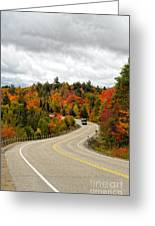 Driving Through Algonquin Park In Fall Greeting Card