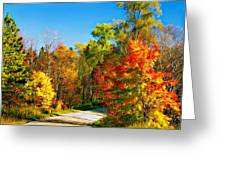 Driving Through Autumn Greeting Card