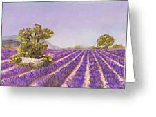 Drome Provence Greeting Card