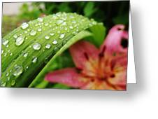 Droplets-2  Greeting Card