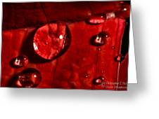 Droplets On Red Greeting Card