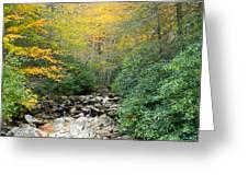 Dry Creek Bed Greeting Card