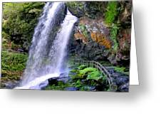 Dry Falls 2 In Western North Carolina Greeting Card