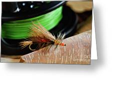 Dry Fly - D003399b Greeting Card