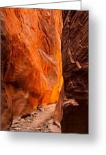Dry Fork Slot Canyon Greeting Card