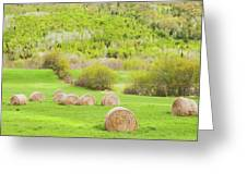 Dry Hay Bales In Spring Farm Field Maine Greeting Card
