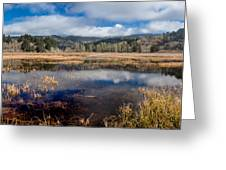 Dry Lagoon In Winter Panorama Greeting Card