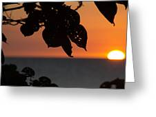 Dry Season Sunset Greeting Card