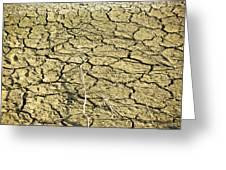 Dry Soil In Lake Bottom During Dryness Greeting Card