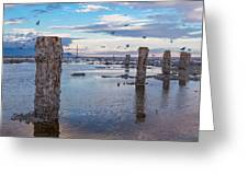Drying Dock Greeting Card