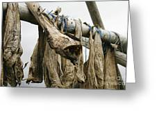 Drying Monkfish On A Stack Greeting Card