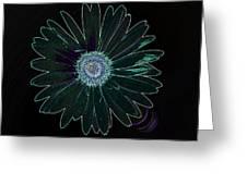 Dscn5419c6-001 Greeting Card