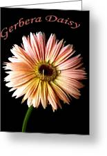 Dscn6163a Greeting Card