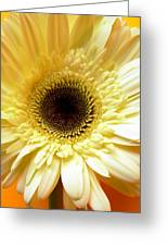 Dscn7673112 Greeting Card
