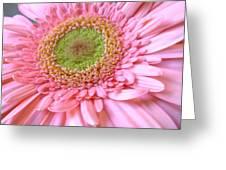 Dscn961441c Greeting Card